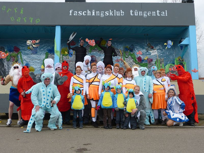 Faschingsumzug 2014 in Bühlertann